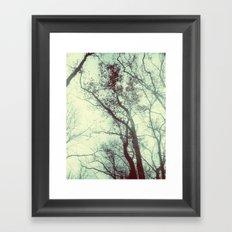 November Day Framed Art Print