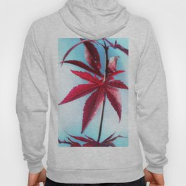 Red Leaves moments Hoody
