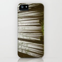 Rainforest of the Pacific Northwest iPhone Case