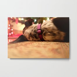 Sleeping Dog Metal Print