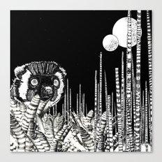 UZU JUNGLE : MOONS & THE LEMUR Canvas Print
