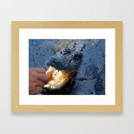 Catch the alligator Framed Art Print