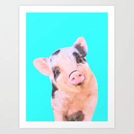 Baby Pig Turquoise Background Art Print