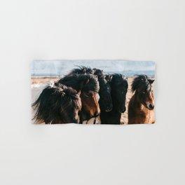 Horses in Iceland - Wildlife animals Hand & Bath Towel