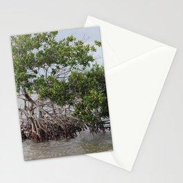 Stranded Mangrove Stationery Cards