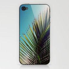 Sunny Palm Tree iPhone & iPod Skin
