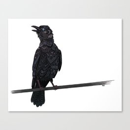 Verklempt Crow Canvas Print