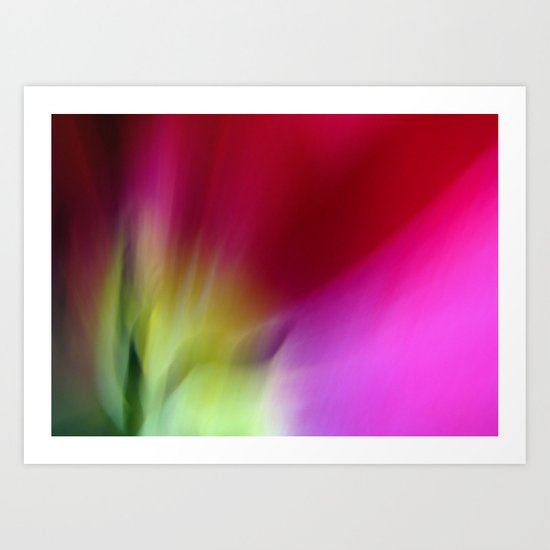 Tulip Sunrise Art Print