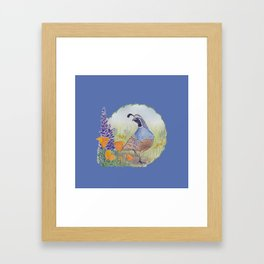 California Quail with Poppies and Lupine on Blue Framed Art Print