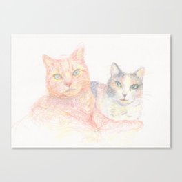 Duncan and Coleco Canvas Print