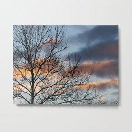 Bony Tree Metal Print