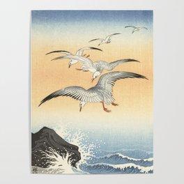 Japanese Seagull Woodblock Print by Ohara Koson Poster