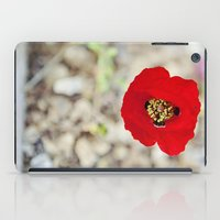 israel iPad Cases featuring Vibrant Red Poppy, Israel by Kim Lucian Photography