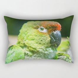 Nanday Parakeet Rectangular Pillow