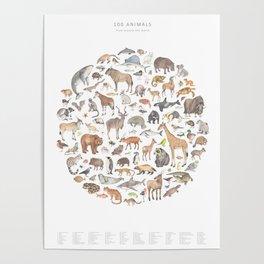 100 animals Poster