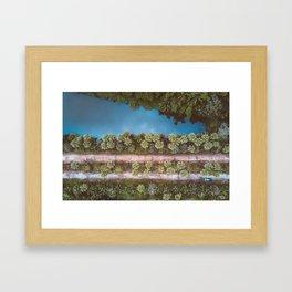 • Natures Recharge • Framed Art Print