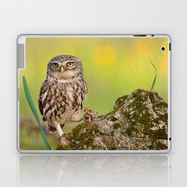 A little owl Laptop & iPad Skin