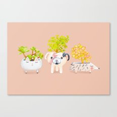 Kawaii dog cat hedgehog succulents Canvas Print
