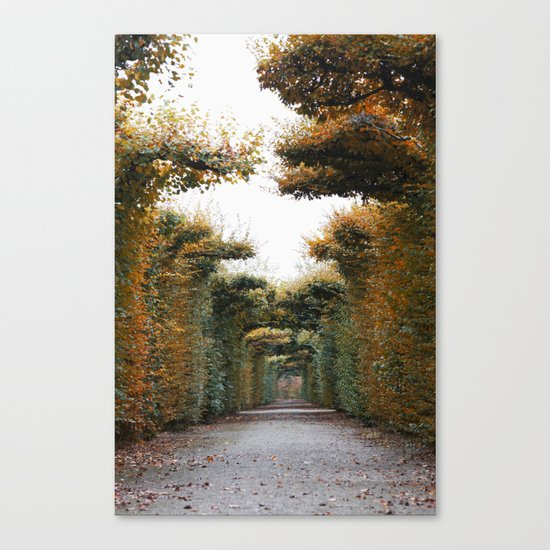 Autumn in park Canvas Print