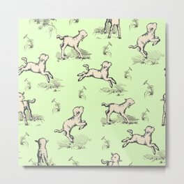 Little Sheep jumping in the meadow Metal Print