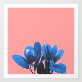 Blue Plant Pink Background Art Print