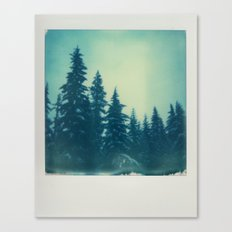 Mountain Trees Canvas Print