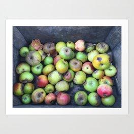 Apple Blemish Art Print