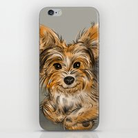 yorkie iPhone & iPod Skins featuring Yorkie by Sam Bock
