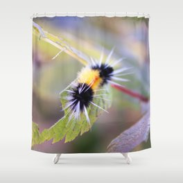 Wooly Brear Caterpillar Shower Curtain
