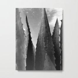 Agave Towers Metal Print
