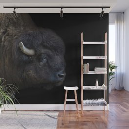 Bison Photography | Wildlife Art | Animal Wall Mural