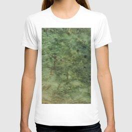 Greenstone grain T-shirt