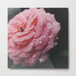 Pink Tears  Metal Print