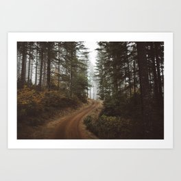 Costal Road, OR  Art Print