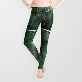 emerald rush Leggings