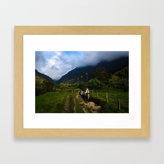 Valle de Cocora Framed Art Print