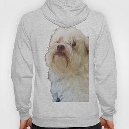 Grumpy Terrier Dog Face Hoody