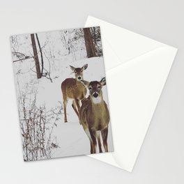 Deer in Winter Stationery Cards