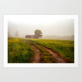 One Room Country Shack Art Print