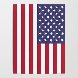 USA National Flag Authentic Scale G-spec 10:19 Poster