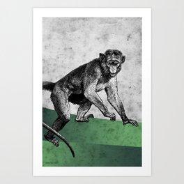 Green monkey Art Print