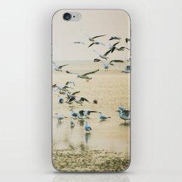 My heart beats in a million gulls iPhone Skin