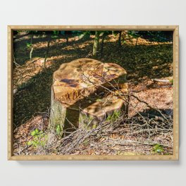 Tree Stump of cut down Tree in the Forest (orange/brown) Serving Tray