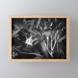 A Riot of No Color Framed Mini Art Print