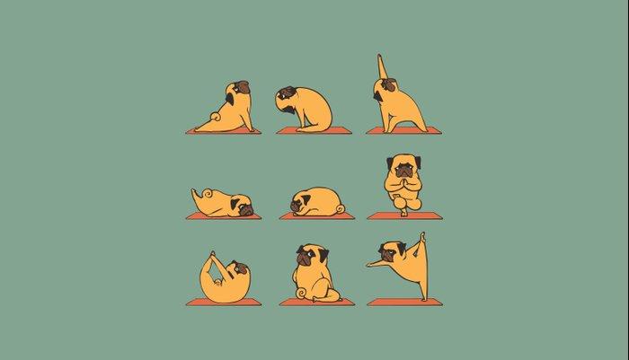 Pug Yoga Pillow Sham
