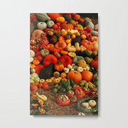 Bountiful Harvest Metal Print