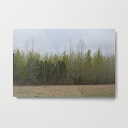 Forest East Metal Print