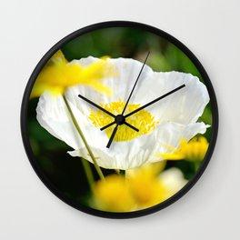 White Beauty Wall Clock