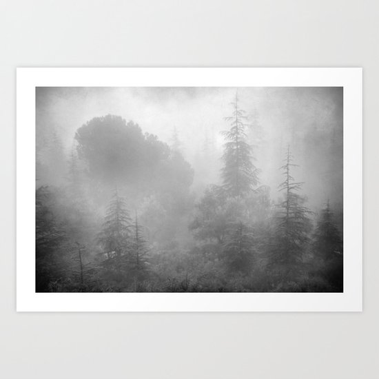 The misty forest.... Art Print