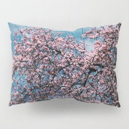 Cherry Blossoms Pillow Sham